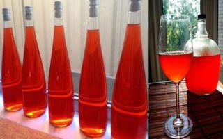 Вино из забродившего варенья (компота) в домашних условиях: как приготовить напиток правильно?