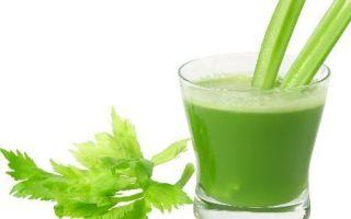 Питьевая настойка сельдерея (корня или стеблей) – рецепт приготовления напитка в домашних условиях