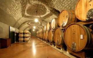 Особенности вин Каберне Совиньон (Cabernet Sauvignon): как появился сорт и описание напитка