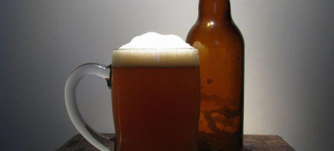 Пиво в домашних условиях — этапы и простые рецепты приготовления