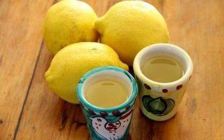 Вино из лимонов в домашних условиях – правильный рецепт и варианты употребления напитка