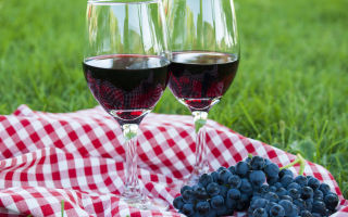 Вино из винограда Изабелла в домашних условиях — 4 простых рецепта