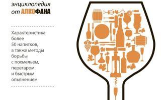 Настойки Сиббиттер: понятие и виды, культура пития и рецепты приготовления вкусных коктейлей