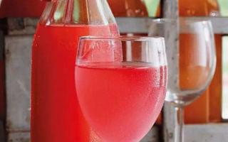 Вино из ревеня в домашних условиях – рецепт приготовления и вариант с лимоном
