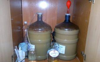 Как поставить брагу в домашних условиях: нюансы изготовления