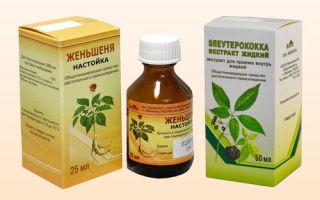 Настойка элеутерококка: рецепт приготовления в домашних условиях и применение, правила приема