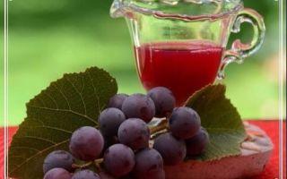 Виноградное вино в домашних условиях – универсальный рецепт и основные правила производства