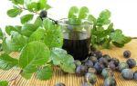 Домашнее вино из терна – лучший рецепт напитка и список необходимых ингредиентов