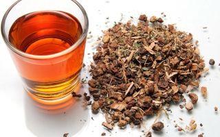 Калгановка – рецепт настойки корня калгана на водке или самогоне, с чем употреблять?