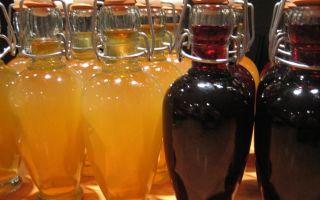 Домашняя наливка из винограда — лучшие рецепты настойки и список необходимых компонентов
