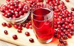 Клюковка – рецепт настойки из клюквы на водке или самогоне в домашних условиях