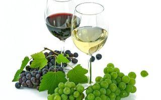 Вино Барбера: хорошие годы и интересные сведения, виды и культура пития напитка