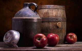 Брага из яблок для самогона: простые рецепты