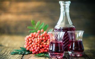 Домашнее вино из калины – рецепт и технология приготовления, польза и вред напитка