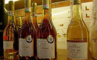 Токайские вина Венгрии: понятие и виды напитка, культура пития и технология производства