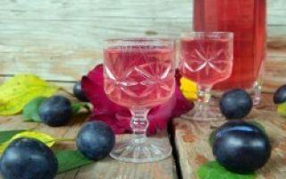 Домашняя настойка из сливы на водке и спирте: лучшие рецепты и гастрономические сочетания