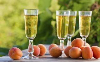 Вино из кураги в домашних условиях – рецепт приготовления и варианты употребления