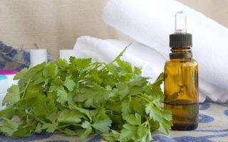 Настойка петрушки – рецепт на листьях и корне, применение и показания для использования