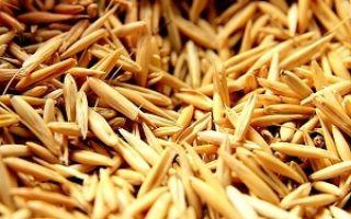 Самогон из картофеля — рецепт браги и технология перегонки, список необходимых ингредиентов