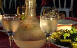 Брага из березового сока – 2 рецепта самогона и советы опытных самогонщиков