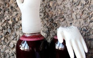 Домашнее вино с перчаткой на банке (бродильной емкости): этапы изготовления и простые рецепты напитка