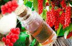 Настойка лимонника: рецепт приготовления и применение настоя в лечебных целях
