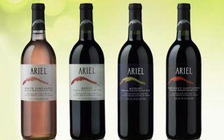 Безалкогольное вино как альтернатива обычному: заменяющие источники удовольствий и описание напитков