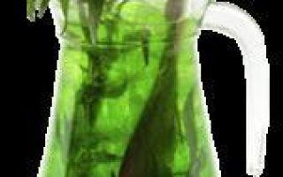 Настойка на тархуне водки (спирта, самогона) – рецепт и полезные свойства зеленого напитка