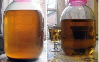 Нужно ли фильтровать (снимать с осадка) вино при брожении: особенности приготовления напитка своими руками