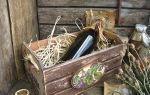 Вино из бузины в домашних условиях — рецепты из цветков и ягод, правила приготовления напитка
