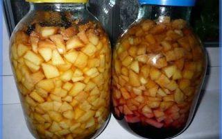 Рецепт изготовления кальвадоса из яблок в домашних условиях