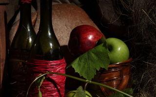 Домашнее вино из ранеток (яблок) – простой рецепт без дрожжей и список необходимых компонентов