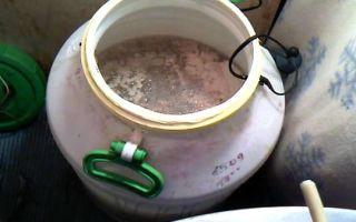 Приготовление браги для самогона в домашних условиях