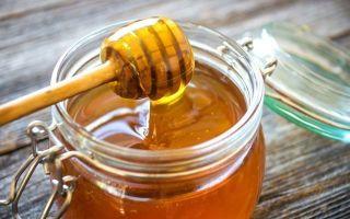 Коньяк из чернослива в домашних условиях – пошаговый рецепт и список необходимых ингредиентов