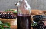 Домашние настойки из черноплодной и красной рябины — простые и оригинальные рецепты