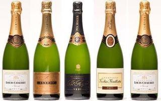 Шампанское – игристое вино из французской провинции Шампань и его характеристика