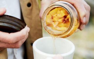 Настойка из персиков в домашних условиях – рецепт на водке, как выбрать плоды для наливки?