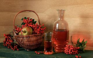 Настойка рябины на самогоне — 5 лучших рецептов
