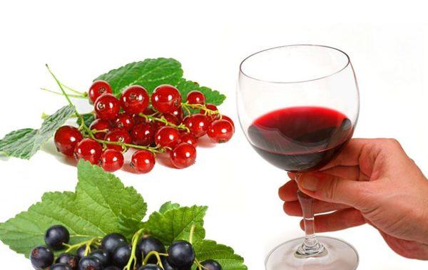 Польза домашнего вина из смородины