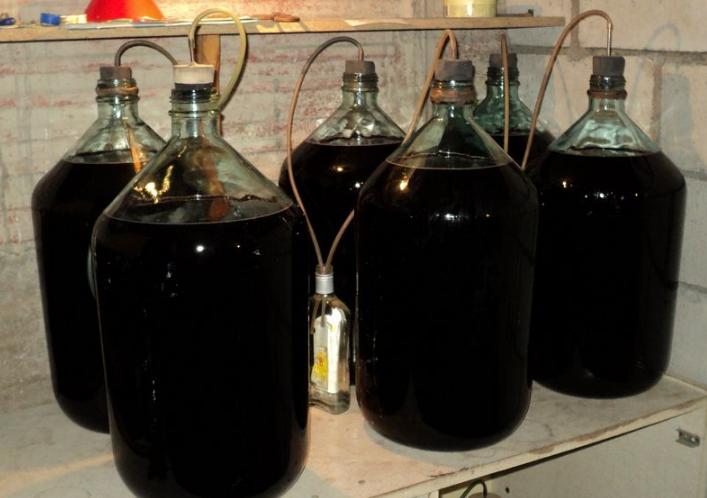 Домашнее вино перестало бродить раньше времени
