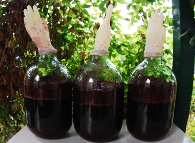 Заготовки из трна на зиму вино