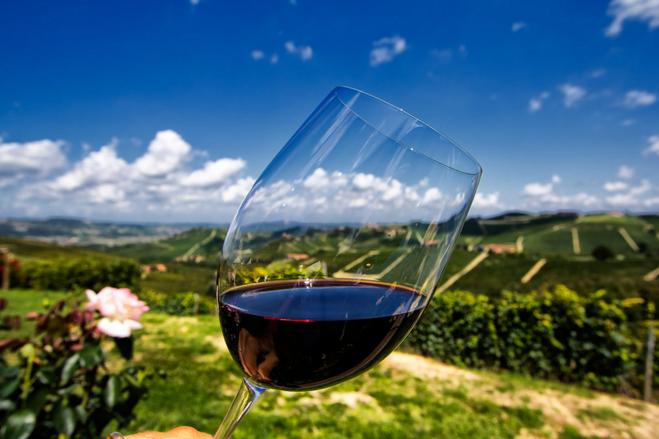 Вино из терна в домашних условиях – простой рецепт, как делать