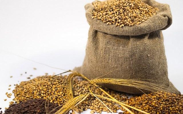 Самогон из пшеницы – рецепт браги и технология приготовления