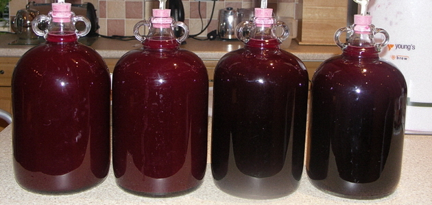 Нужно ли фильтровать (снимать с осадка) вино при брожении
