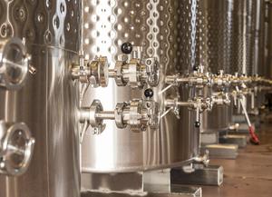 Вино «Пино нуар (pinot noir)» – особенности и культура употребления