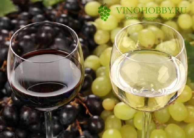 Домашнее вино из цветов – универсальный рецепт приготовления