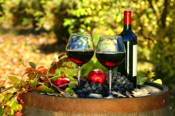 Вино Брунелло ди Монтальчино: особенности и культура пития