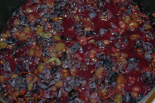 Чача из Изабеллы в домашних условиях: рецепт браги и перегонка