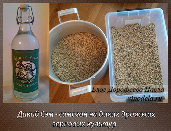 Сахар в зерновом самогоне - надо или нет