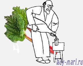 Настойка из ревеня в домашних условиях – правильный рецепт